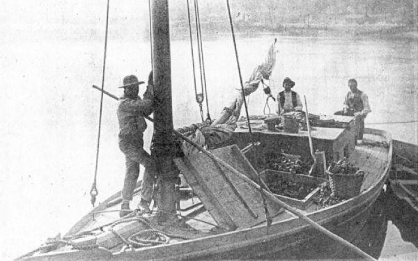 K_3-men-in-a-boat