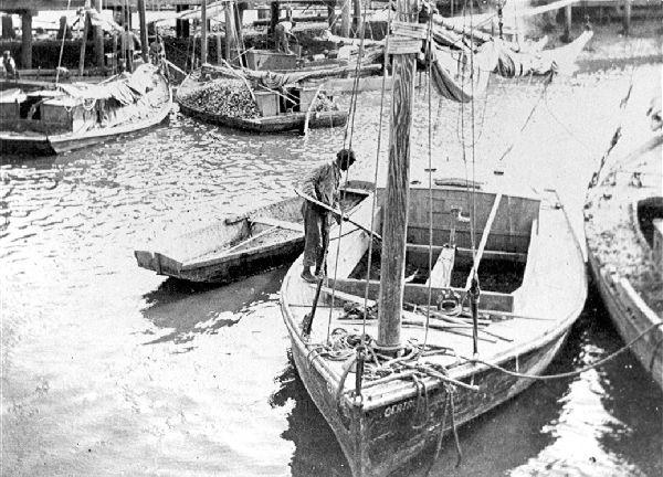 G_oyster-sailboats