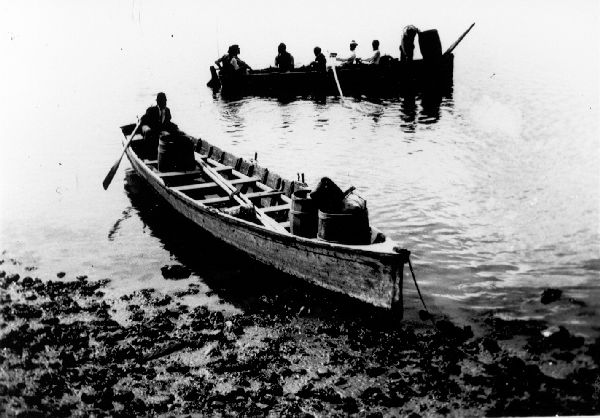 L_oyster-row-boats
